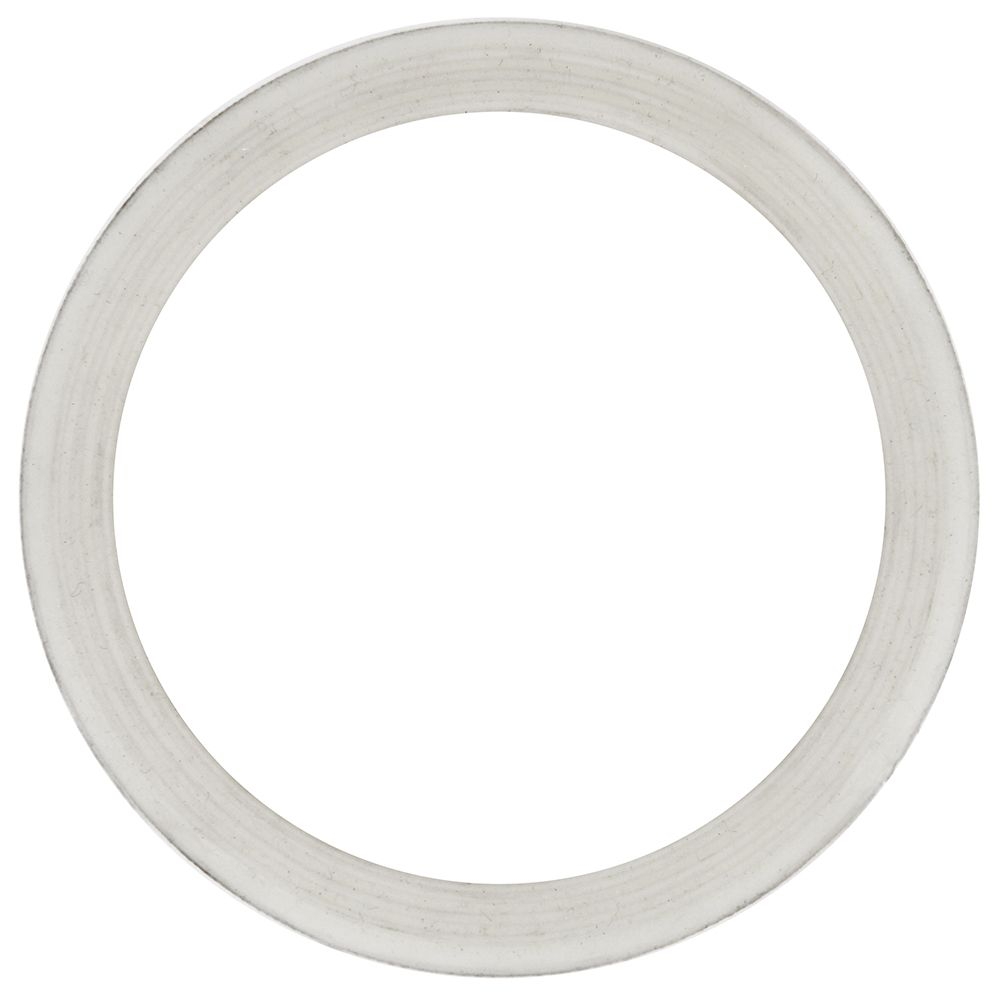 Screen Gasket for 250 Food Strainer