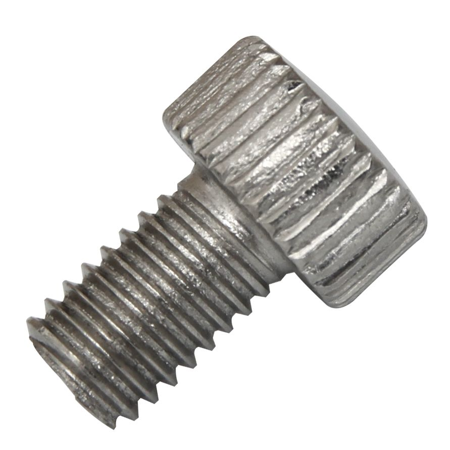 Stainless Steel Screw for Screen